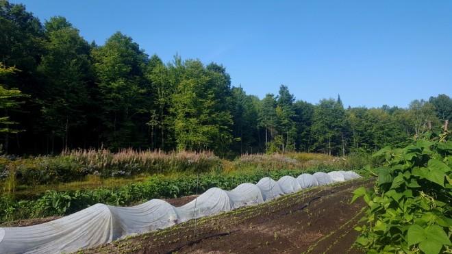les-jardins-vertige-le-terroir-d-eva
