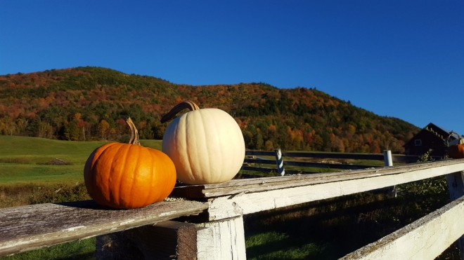 vermont-fall-pumpkin